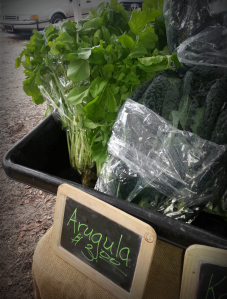Arugula from Adam's Farm and Gardens, LLC.