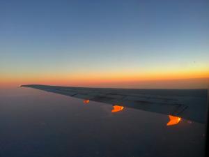 On wings of sunlight
