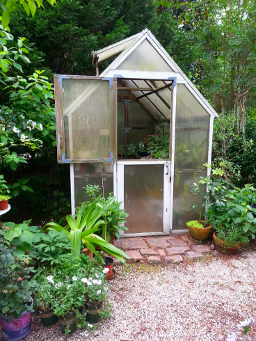 The greenhouse in our side yard